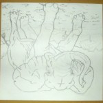 5th grade- Draw What You See